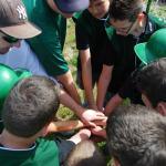 Sofball-Baseball