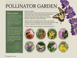 G21-1 Semi-custom pollinator garden interpretive sign