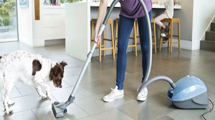 Best Vacuum for Tile Floors and Pet Hair Reviews 2018