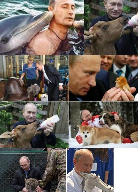 Путин и животные