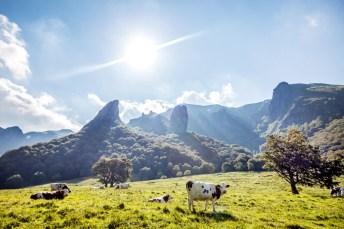 visite guidée des volcans avec un guide touristique de Vademecum: Vallée de Chaudefour en Auvergne