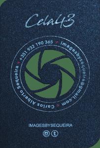 Cartões de Luxo com Relevo e Corte a Laser