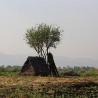 Lacs Inlé et son marché birman