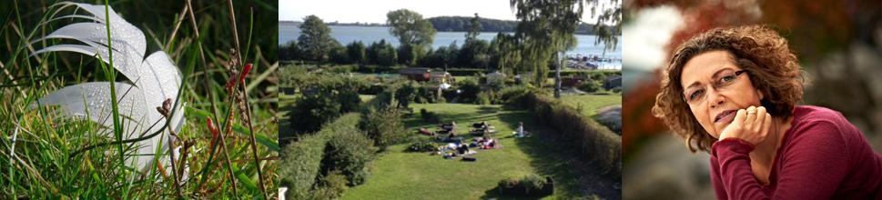 Væksthuset v / Anette Fribert genopbyggende yoga