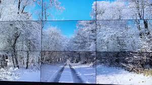 vagabondageautourdesoi-cusset- les quatre saisons-2- wordpress-.jpg