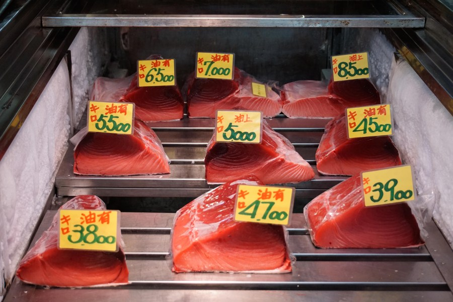From $30USD/kg to $85USD ad above, the leaner the tuna is, the more expensive it gets.