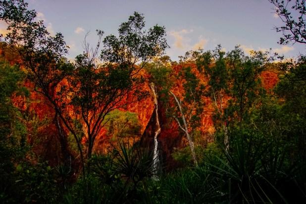 Vagabondays-Australia-Litchfield-34