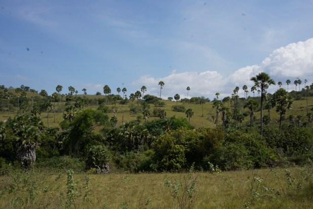 Vagabondays-Komodo-Indonesia-50