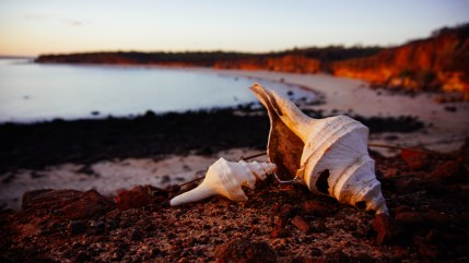 vagabondays-australia-broome-55