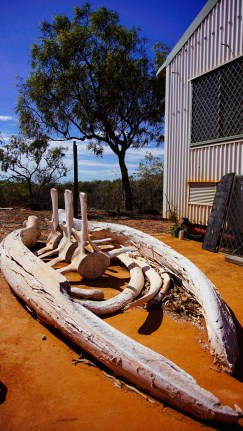 vagabondays-australia-broome-57