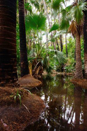 vagabondays-australia-gibb-river-road-30