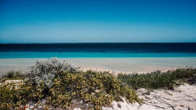 vagabondays-coral-bay-exmouth-29