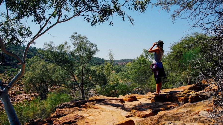 vagabondays-australia-kalbari-5