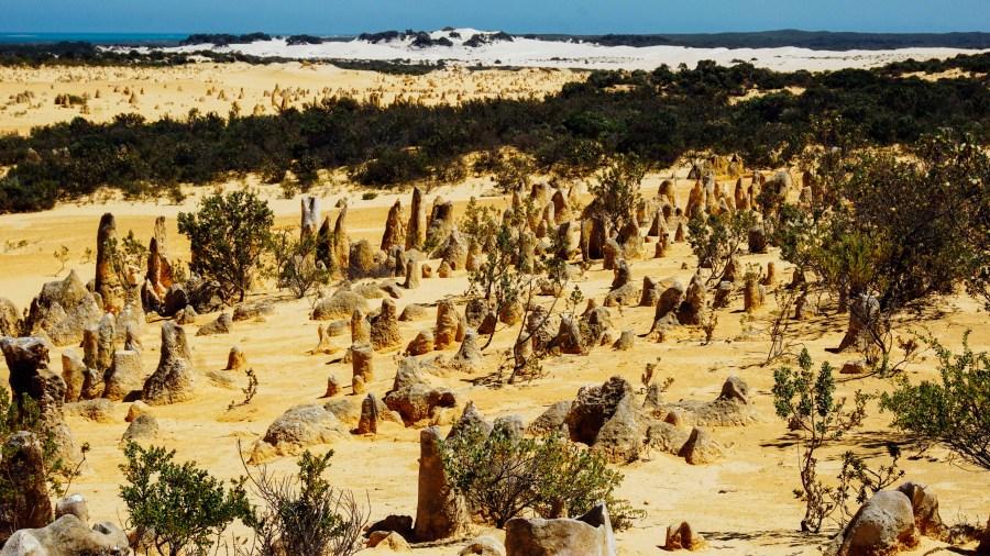 vagabondays-australia-lancelin-5
