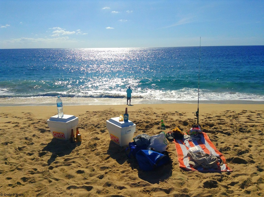 5 Best Public Beaches to Visit in Los Cabos, Mexico