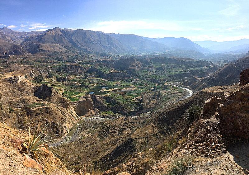 Itinéraire de 3 semaine au Pérou canyon colca