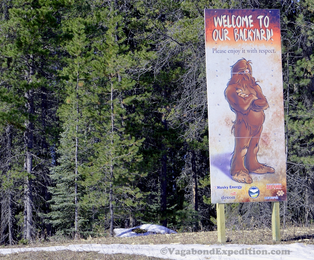 Clearwater County – Home of Bigfoot?