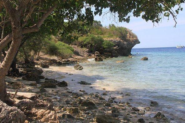 Menjangan Island1