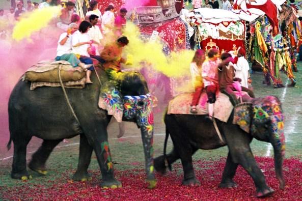 Famous  Elephant Festival  of Rajasthan