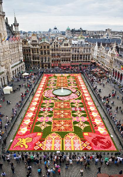 Top view of 2010 carpet
