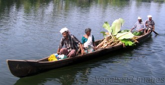 In the Gods'own country! (Backwaters of Kerala)