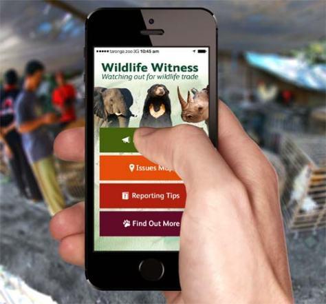 WildlifeWitness_iPhone5S_Hand