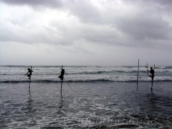 Stilt fishermen of Galle