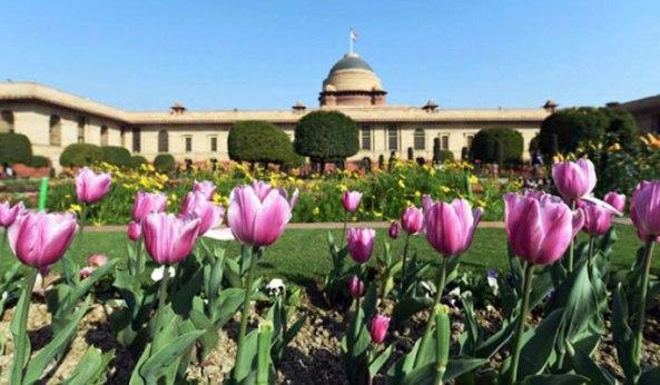mughal-garden685