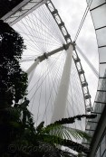 Singapore Flyer19