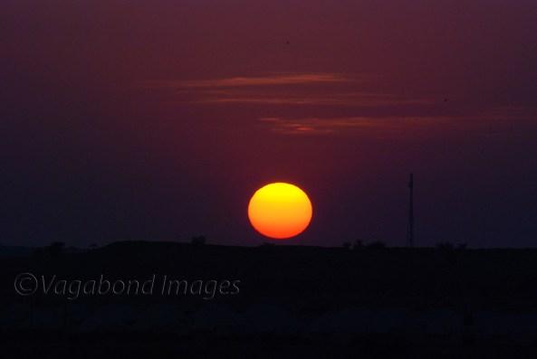 Sunset at Thar8