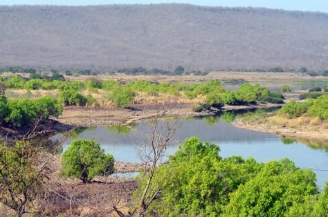 Ken river at Panna