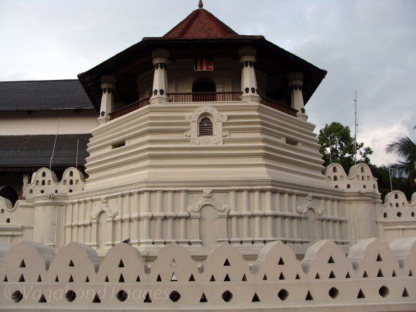 Tooth Relic1