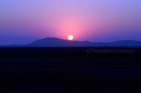 Pink Sunset5