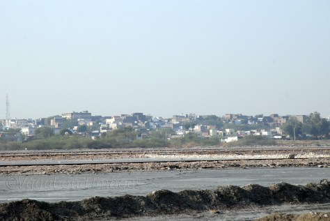 Sambhar lake and the town