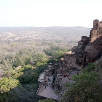 Ranthambore Fort: Red lake, langurs and a Ganesha with three eyes