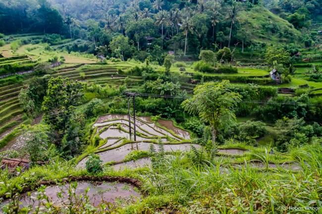 Paradise found: East Bali