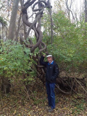frank-with-climbing-vine-along-the-wissahickon-creek