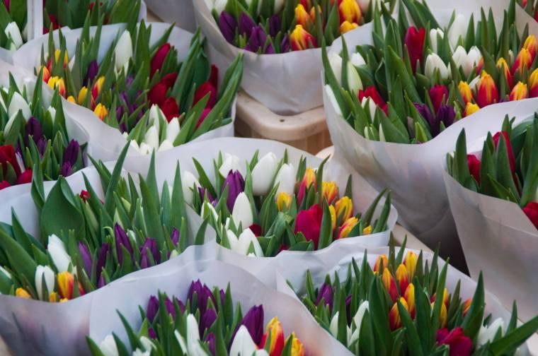 Tulipanes en el mercado de flores de Amsterdam