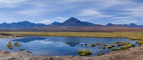 Laguna frente al volcán Putana donde pudimos ver varias especies de aves, como la guata (una especie de pato negro), Chile