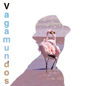 Logo de vagamundosviajeros-com - Flamencos en la reserva Eduardo Avaroa, Bolivia