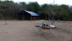 Hora del té en el campamento Wilpattu Big Game