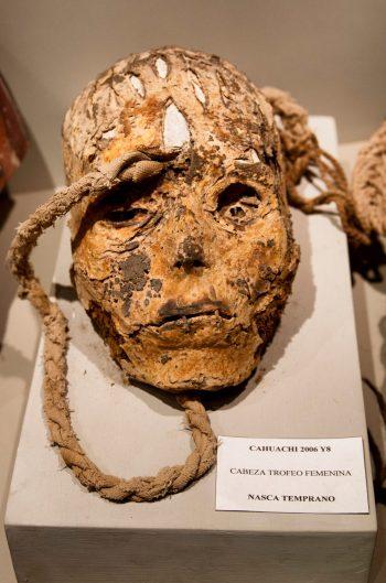 Detalle de la calavera de una mujer ofrecida en sacrificio, museo de Nazca