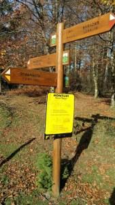 Señales dentro del Parque Gorbea indicando las distintas rutas posibles, entre ellas la que conduce al hayedo de Otzarreta