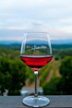 Tomando un vino con vistas a los viñedos de Prada a tope en el Bierzo, León