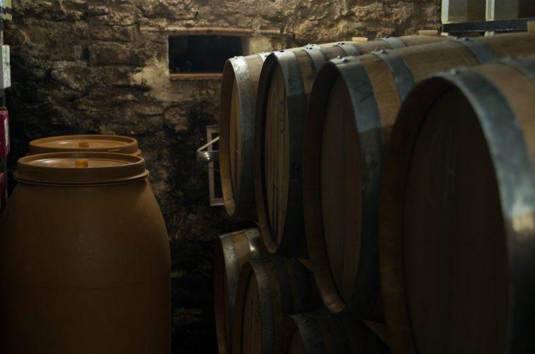 Hasta 15.000 botellas al año produce la bodega Federico Schatz, con procesos totalmente ecológicos