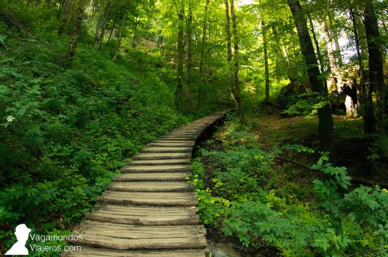 Atraviesas los lagos y bosques de Plitvice siguiendo las pasarelas de madera habilitadas por todo el parque