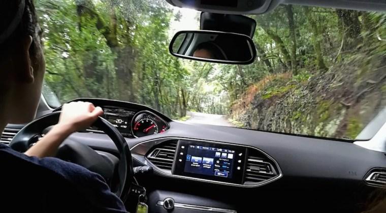 Recorriendo en coche el Parque Nacional Garajonay en La Gomera