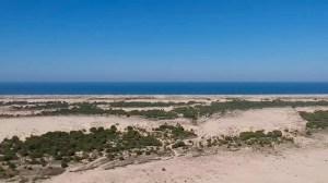 Vista de las dunas de Doñana, frente a la costa del océano Atlántico
