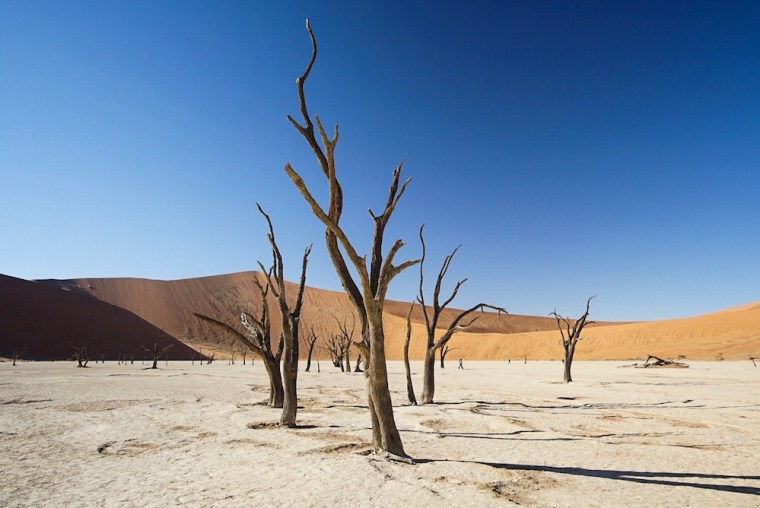 Deadvlei, en el desierto del Namib, Namibia