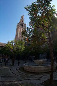 El Patio de los Naranjos en la Catedral y la torre de la Giralda